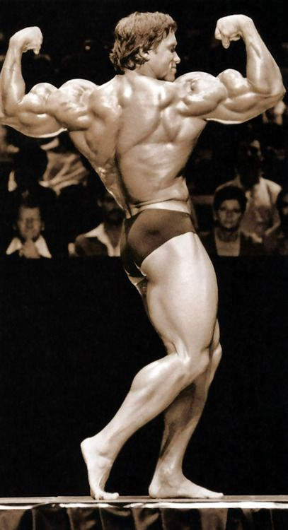 Arnold schwarzeneggers workout blue print explained fittogram 7cd3d209787d845ec89d79f18c298f58 fitspiration body mr olympiag malvernweather Image collections